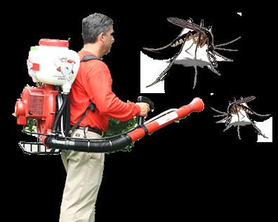 Kết quả hình ảnh cho diệt muỗi