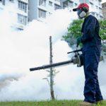 dịch vụ phun thuốc muỗi tại hà nội