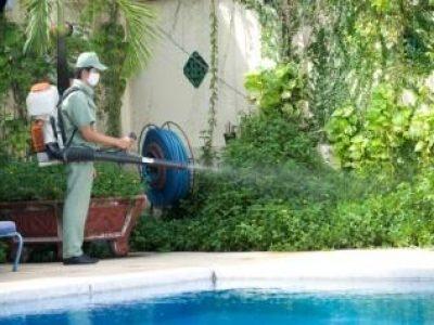 Dịch vụ diệt muỗi uy tín, hiệu quả, không độc hại quận Thanh Xuân
