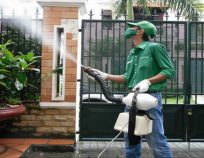 Dịch vụ phun muỗi uy tín, hiệu quả, không độc hại quận Hai Bà Trưng