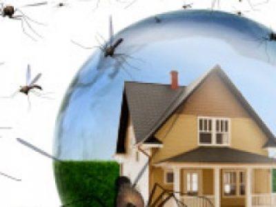 Dịch vụ phun muỗi uy tín, hiệu quả, không độc hại quận Bắc Từ Liêm